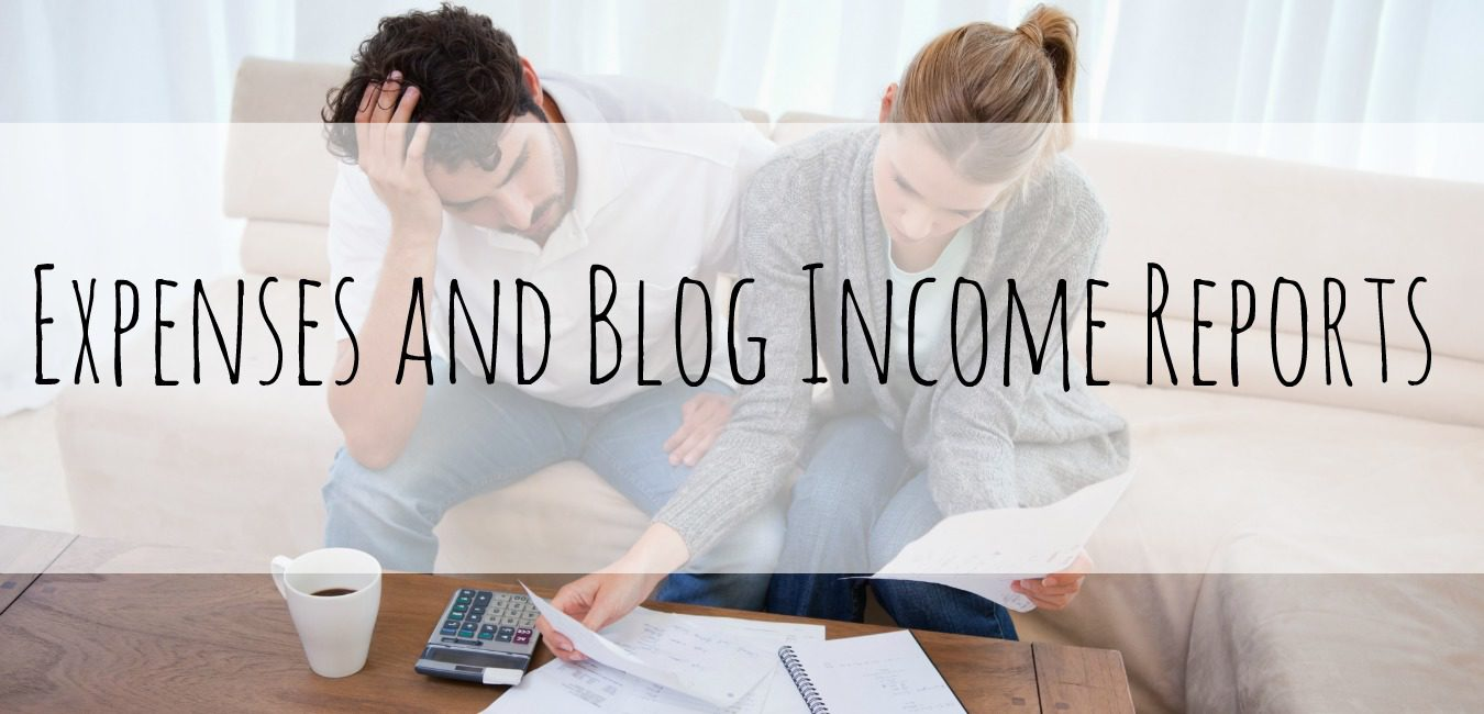 Expenses and Blog Income Reports